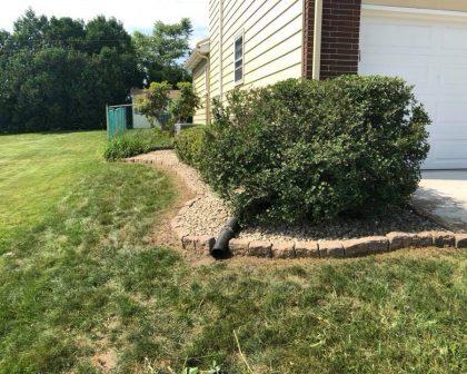 Garden Restoration After